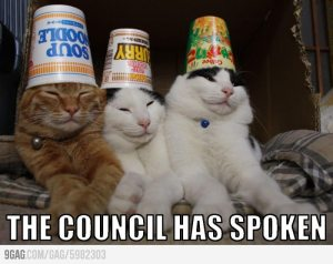 Do not question the council.