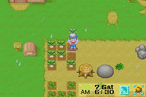 Harvest Moon Friends of Mineral Town Game Shark Codes Gameboy Advance